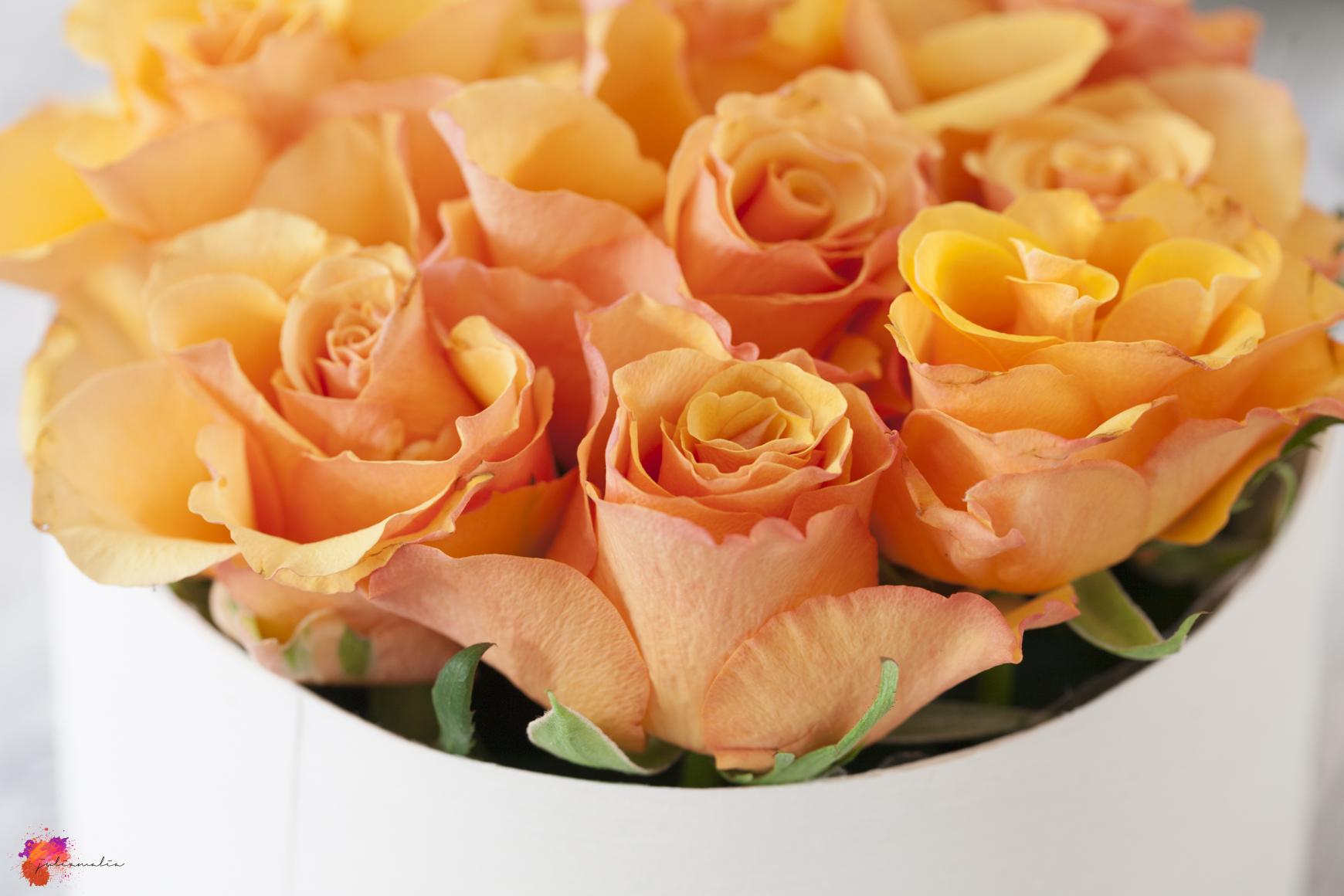 Blumenbox basteln