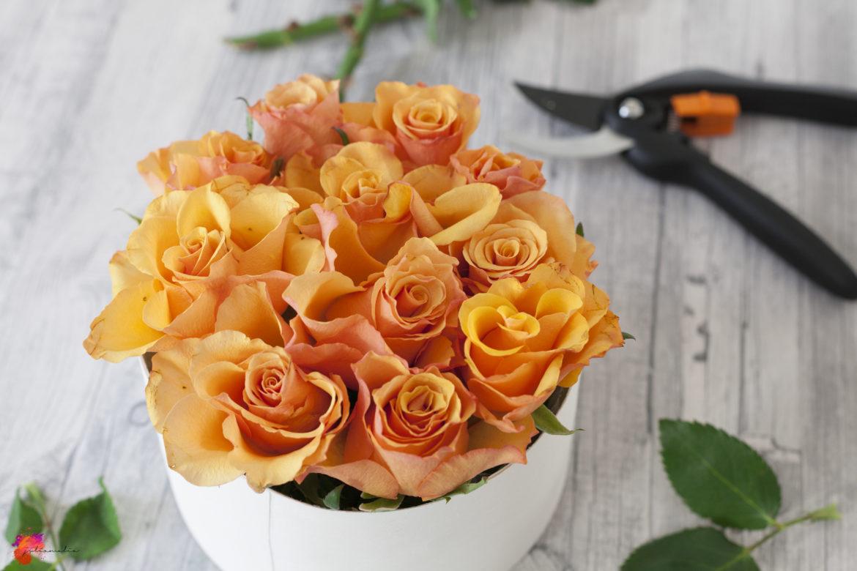 Flowerbox basteln DIY